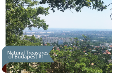 Natural Treasures of Budapest #1