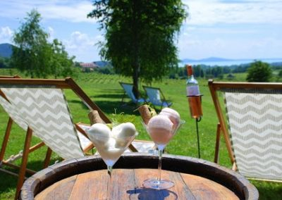 Hike Hungary - Wine Tasting Balaton