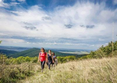 Panoramic Hike in Borzsony